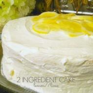 Two Ingredient Cake