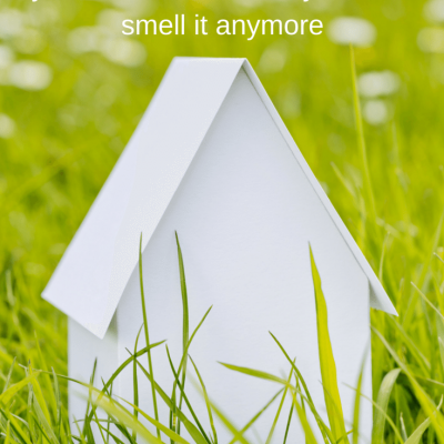 10 ways to know your house stinks but you don't smell it anymore.