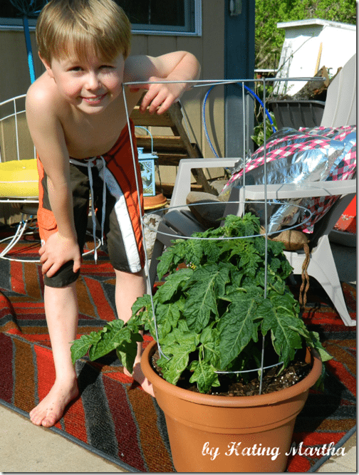 Let your kid's grow and sell at their own Farmer's Market! A great way to get kids excited about gardening and supply your kitchen with fresh produce. Tips for best plants to use and more.