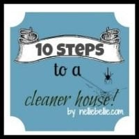10 steps to a cleaner house...tips by NellieBellie