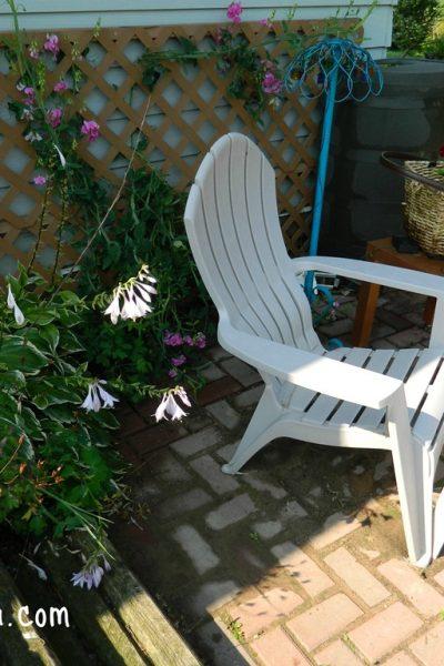 My back brick patio…