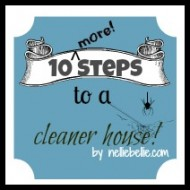 10 steps to a cleaner house for you and your family