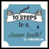 10 more tips to a cleaner house. Tricks for getting your family and kids involoved by NellieBellie