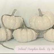 Hobnail pumpkins….kinda.