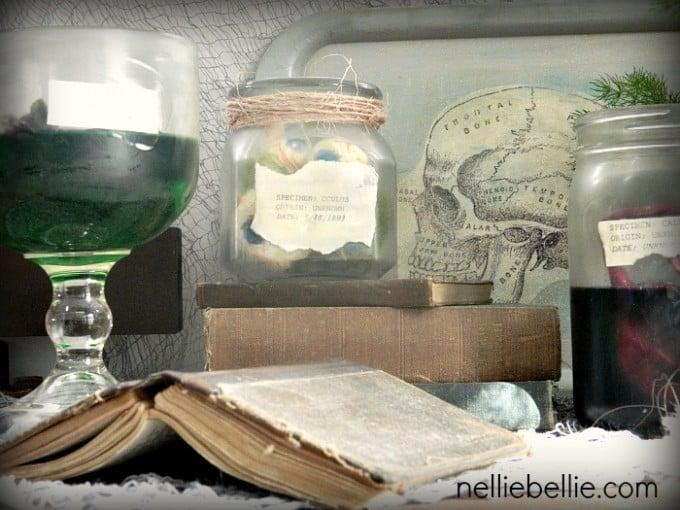 diy specimen jars by NellieBellie