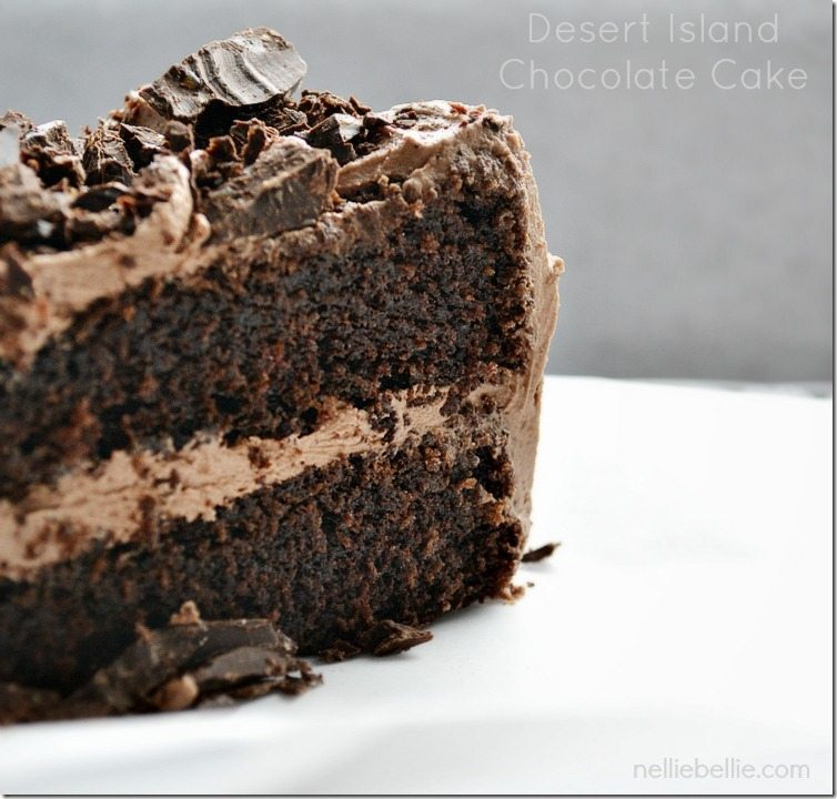Chocolate Cocoa Cake Recipes Scratch
