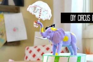 circus elephant feature