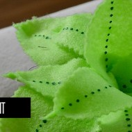 Simple steps to make a felt plant