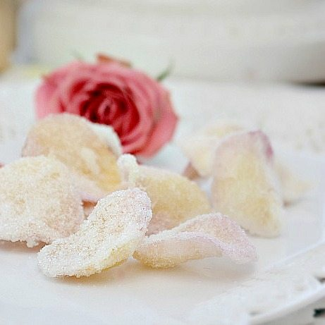 how to sugar petals. a tutorial from nelliebellie.com