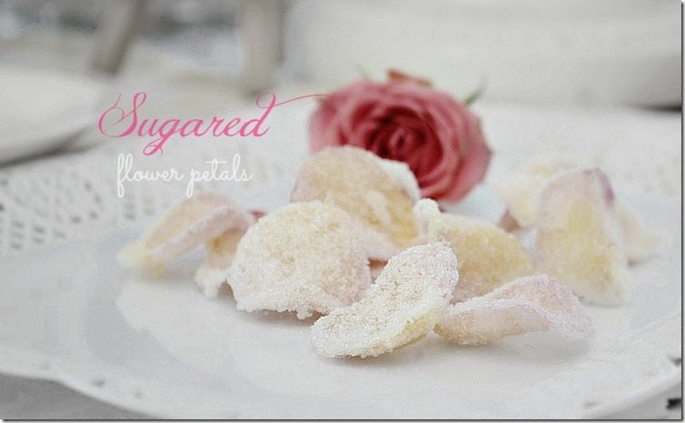 how to sugared flower petals. Easy and so pretty! From NellieBellie