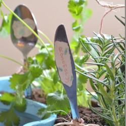 herb-garden9_thumb.jpg