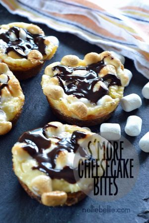 s'more cheesecake bites from nelliebellie.com. Because littler is cuter.