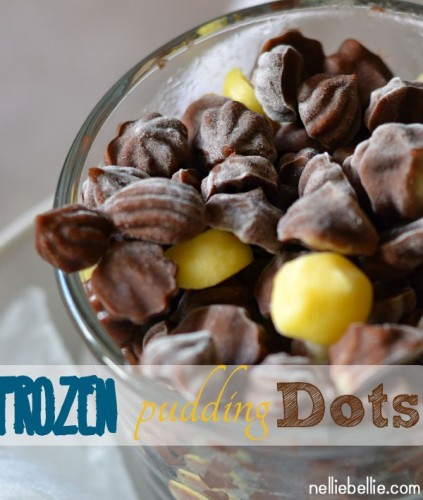 homemade frozen pudding dots. a simple treat to make!