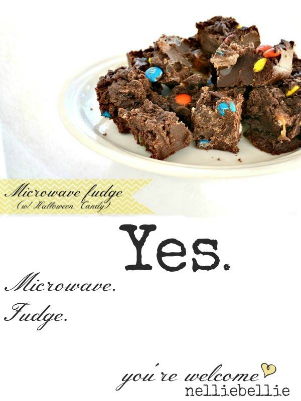 easy, delicious, made in the microwave fudge.