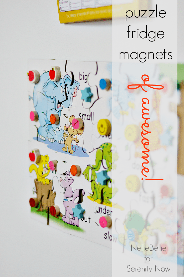 diy magnetic puzzle