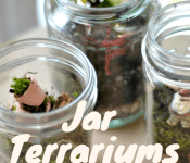 How to make a terrarium in a jar. A terrarium diy tutorial!