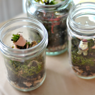 How to make a jar terrarium.