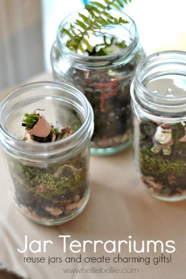 How to make a jar terrarium.