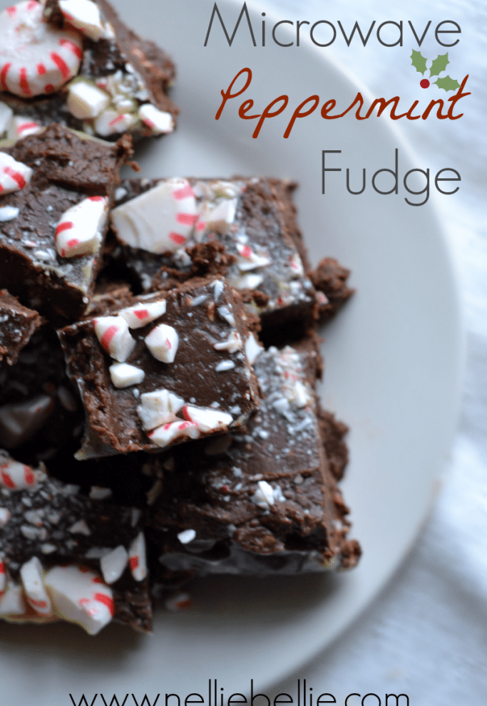 Peppermint Microwave Fudge