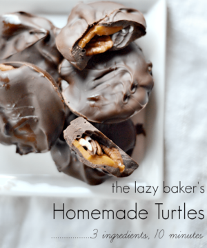 Turtle Candy Recipe from NellieBellie.com