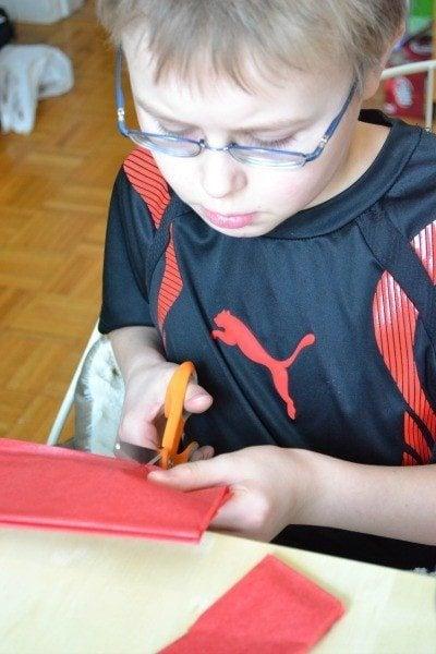 Levi cutting strips