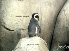 The Minnesota Zoo would be an acceptable place to forget your children, if that were ever an acceptable thing.