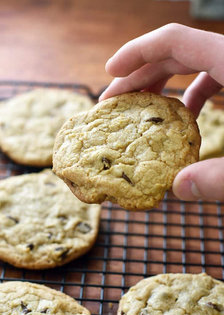 the best chocolate chip cookies!