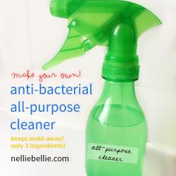 DIY anti-bacterial, all-purpose cleaner. Only 3 ingredients...easy to find!! ~www.nelliebellie.com | DIY antibacterial cleaner