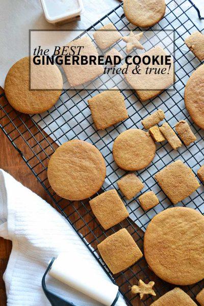 the BEST Gingerbread Cookies