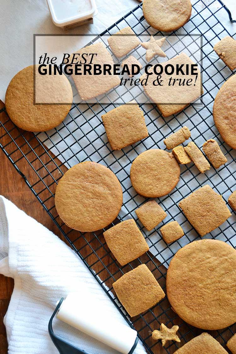 tried & true best Gingerbread Cookies recipe. Cookies, gingerbread, holiday cookies, recipes. | nelliebellie.com | gingerbread cookies