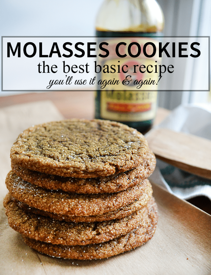 The Best Molasses Cookie recipe, you'll use it again and again! | nelliebellie.com | classic cookie recipe
