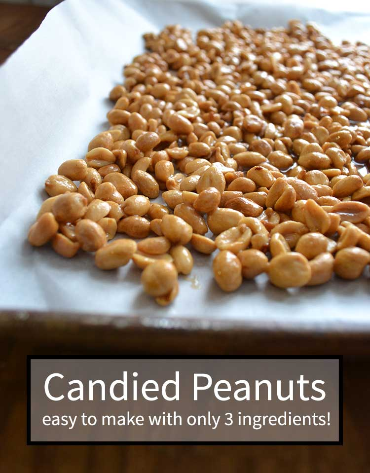 Make candied peanuts with only 3 ingredients with this easy full tutorial from nelliebellie.com