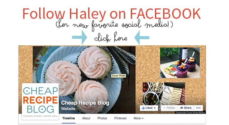 visit Haley from Cheap Recipe Blog on FAcebook