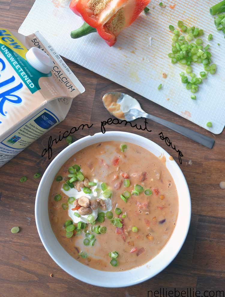 African Peanut Soup Recipe | simple NellieBellie tutorial