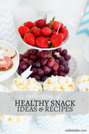 a collection of healthy snacks ideas and recipes. Full recipes included. From nelliebellie.com