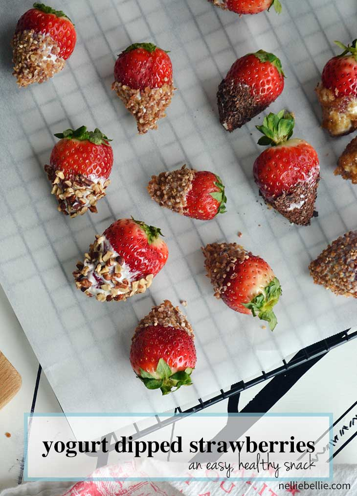 yogurt dipped strawberries are super easy, healthy, and delicious! A great healthy snack from nelliebellie.com