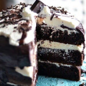 This easy chocolate tuxedo cake is super delicious, and because it doesn't have hard frosting techniques, is a great layered cake for beginners!