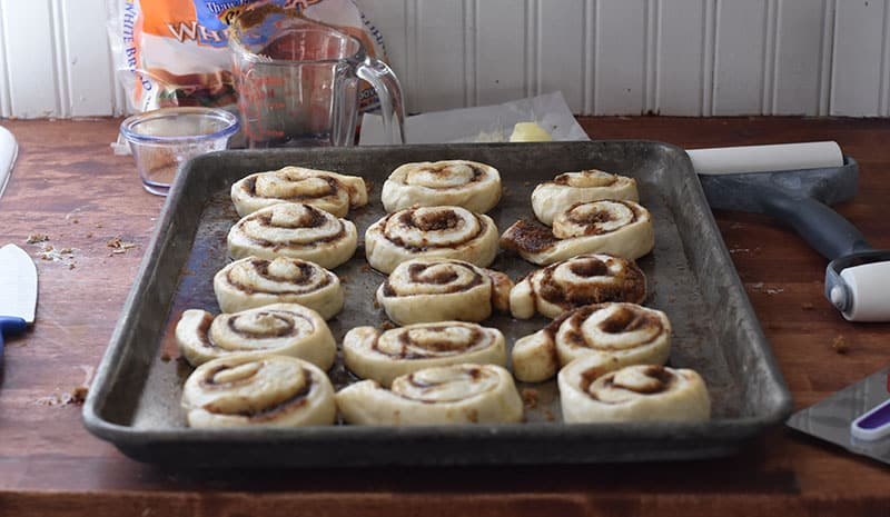 cinnamon rolls ready to be baked on the pan