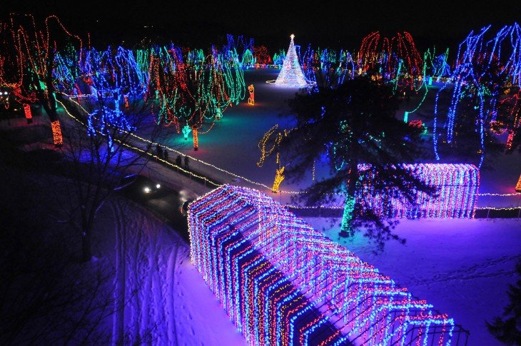 Visit Mankato–Christmas Lights Festival