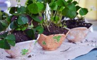 This is a great St. Patrick's Day craft for kids. Decorate small dishes with stickers and nail polish and plant with shamrock for a great neighbors gift!