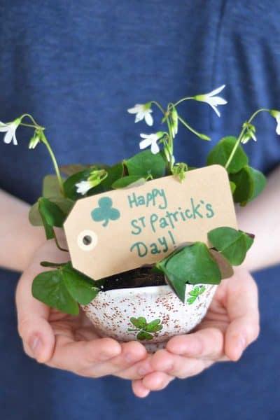 St. Patrick's Day neighbor gift.