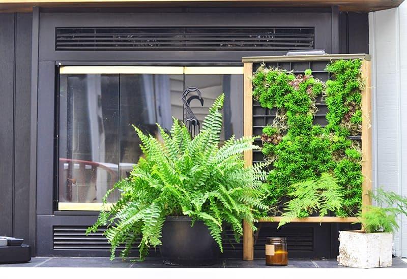 succulent-planter3-800