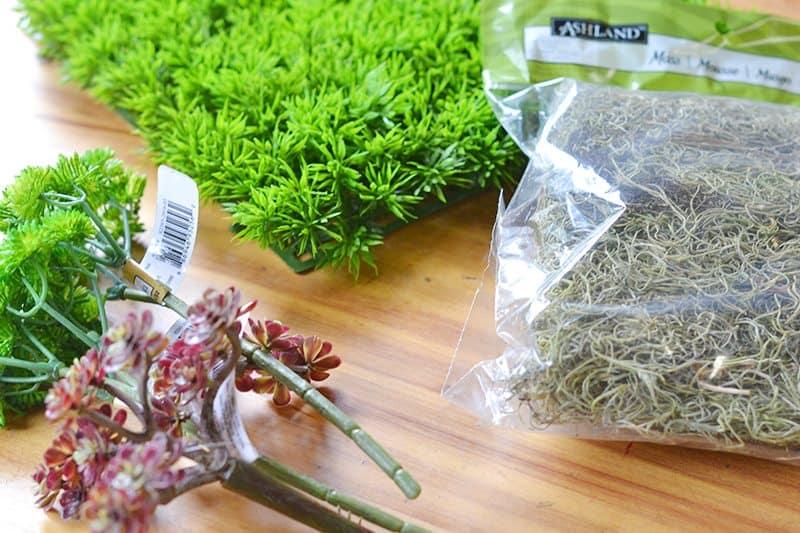 succulent-planter4