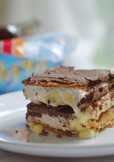 S'mores Chocolate Eclair No-Bake Dessert Bars