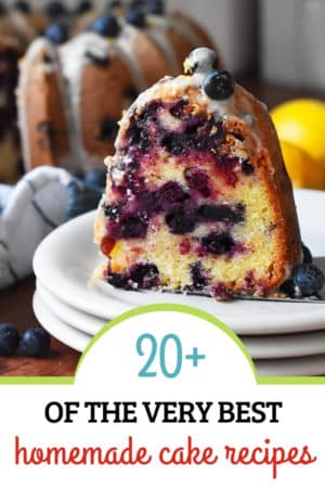 over 20 of the best homemade cake recipes!