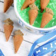 homemade Carrot Dog Treats