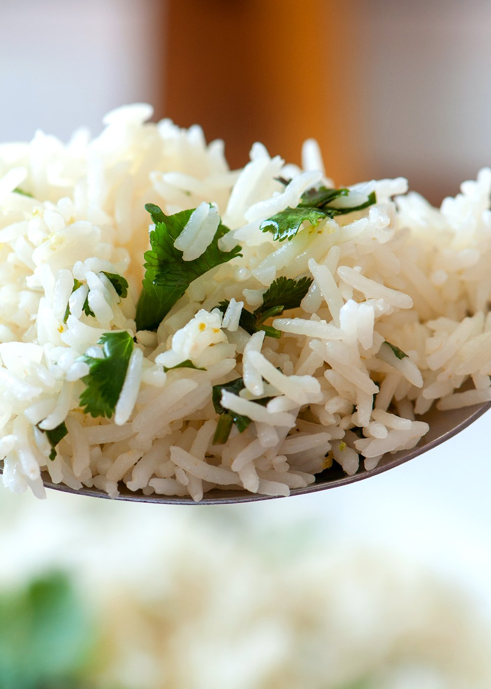 a forkful of cilantro lime rice