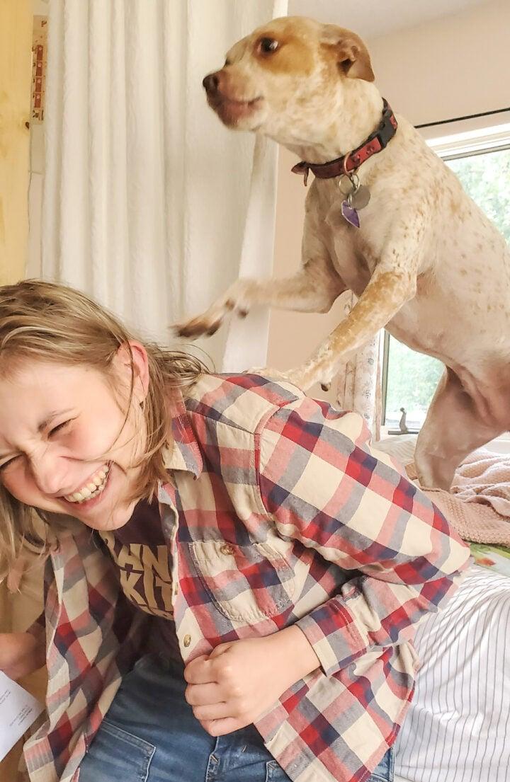 Newton, NellieBellie's rescue pup