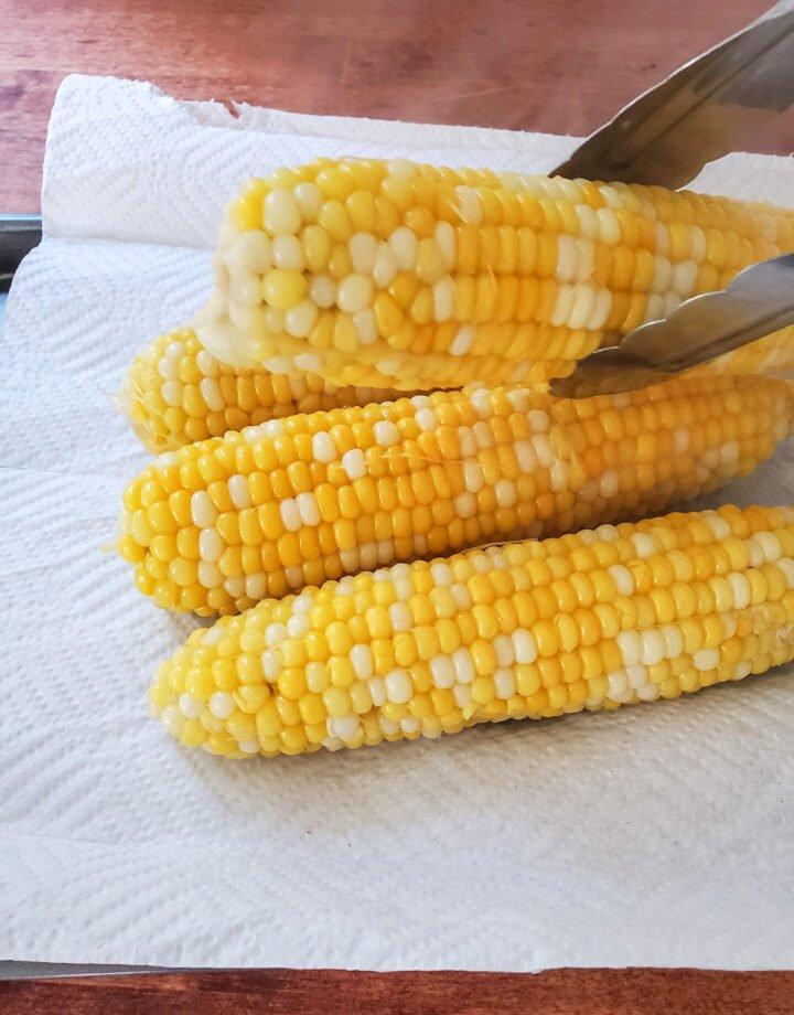 Sweet corn boiled and resting until grilled.